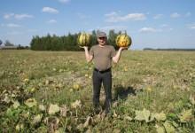 Najlepszy ekogospodarz z Lubelszczyzny