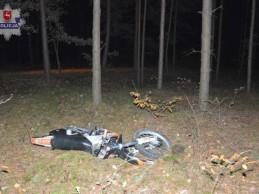 Nieszczęśliwy wypadek w lesie